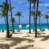 Panerama Beach Palms